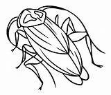 Cockroach Coloring Pages Printable Sheet Bestcoloringpagesforkids Getcolorings Results Unique sketch template