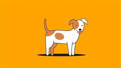 Popular Dog Breeds Olga Russia Russians Dogs