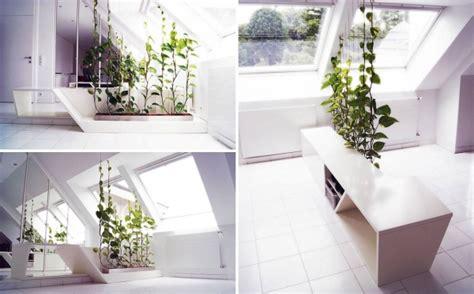 pflanzen als raumteiler 35 ideen f 252 r raumteiler f 252 r jede wohnsituation geschmack