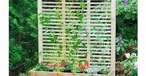 Treillis Pour Plantes Grimpantes : bac rectangulaire avec treillis pour des plantes ~ Premium-room.com Idées de Décoration