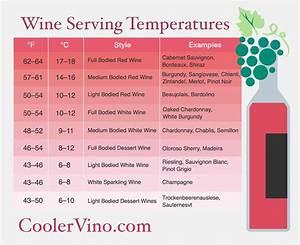 Temperature For Wine Fridge - Design Decoration