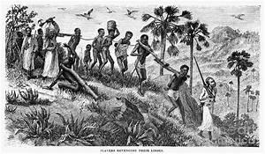 Yoruba Enslavement of African Ancestors, Major Blocks on W ...