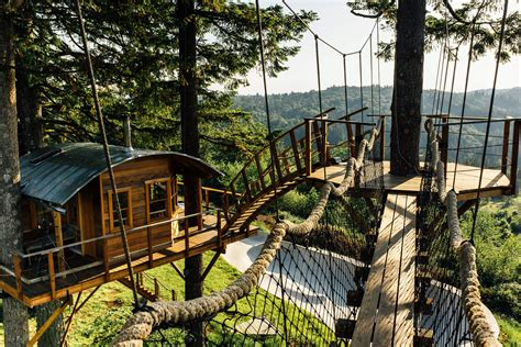 pictures of cool tree houses guy quits his job to build a cool tree house and live like