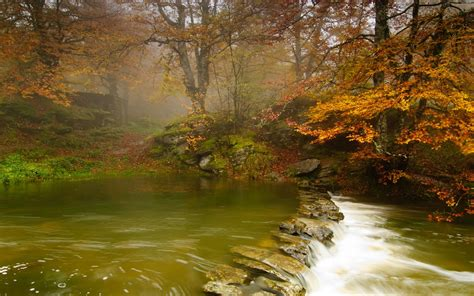 nature, Landscape, River, Forest, Trees, Stones Wallpapers ...