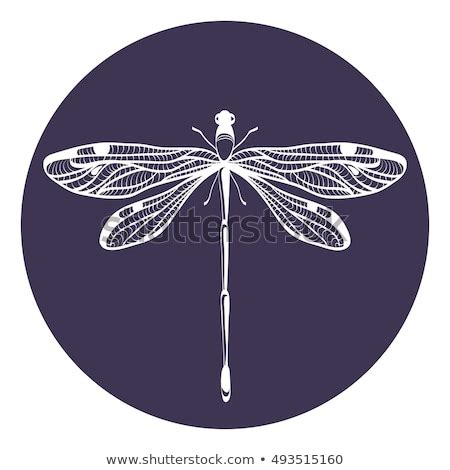 fly vector image freevectors