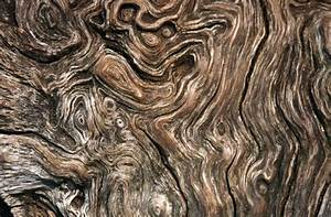 Green Wood Grain Ceramic Tile For Floor New Background And