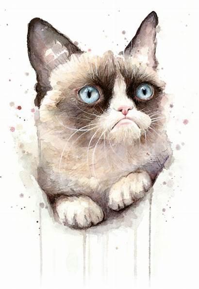 Cat Watercolor Grumpy Painting Olga Shvartsur Animal
