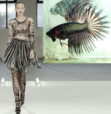 fashionistas daily  mother nature inspired fashions