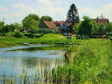 kopacki rit nature park croatia reviews