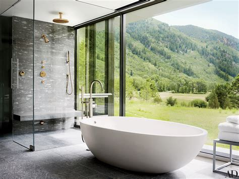 In Shower - a large shower and bathtub with mountain views in aspen