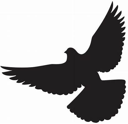 Dove Silhouette Clip Bird Clipart Flying Flight