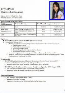 curriculum vitae template accountant cv doc cv format professional