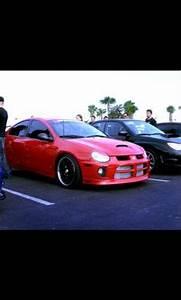 Dodge Neon SRT4 Laid Back Pinterest