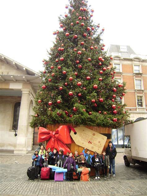 99th reading scout group 187 blog archive 187 cubs enjoy their