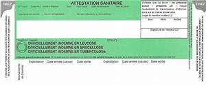 Carte Verte Assurance : gds61 groupement de d fense sanitaire de l 39 orne ~ Gottalentnigeria.com Avis de Voitures