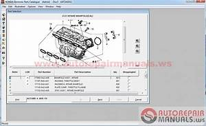 Free Auto Repair Manual   Honda Epc 11
