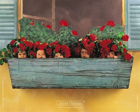 geddes baby pictures babies in flower pots 9 wallcoo net