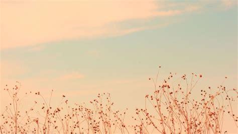 desktop hintergrund frühling hd hintergrundbilder himmel gras wolken licht hintergrund