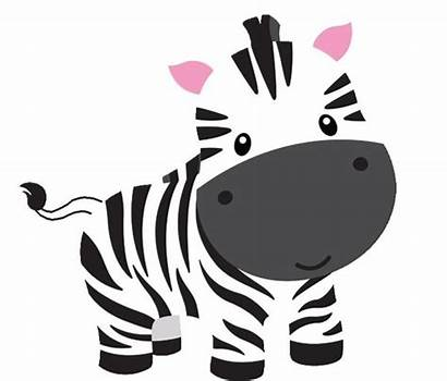 Zebra Clipart Shower Drawing Draw Clip Easy