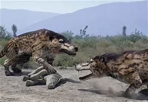 Andrewsarchus: THE BIGGEST CARNIVOROUS MAMMAL EVER