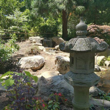 unc botanical gardens unc botanical gardens nc reviews top tips