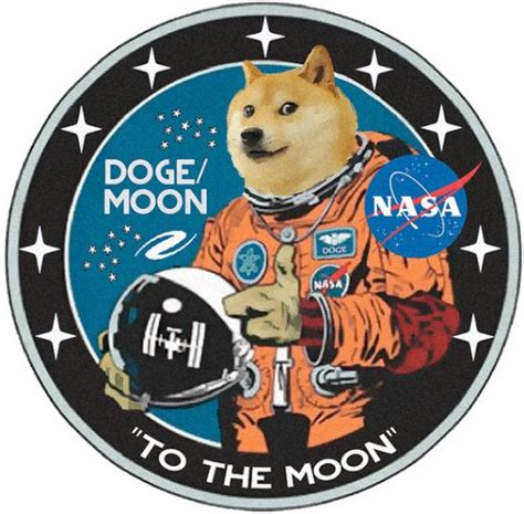 Will Dogecoin Succeed? A Deeper Look into Cryptocurrencies