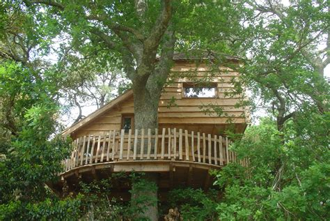chambre d hotes dans les arbres cabanes perchées dans les arbres chez hubert léon