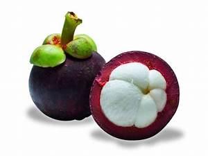 mangostene fruit