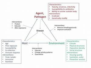 This Is A Summary And Diagram Of The Epidemiological Triad