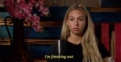 Episode 7 Corinne GIF by The Bachelor - Find & Share on GIPHY