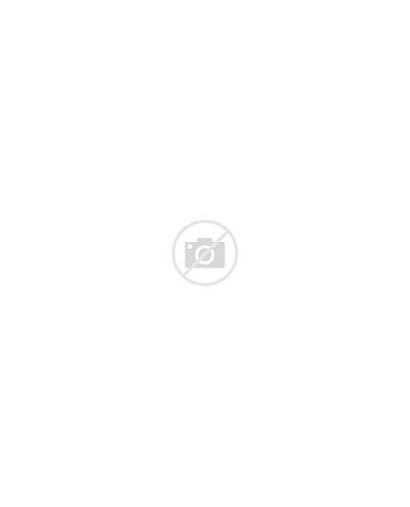 Bridal Shower Invitations Purple
