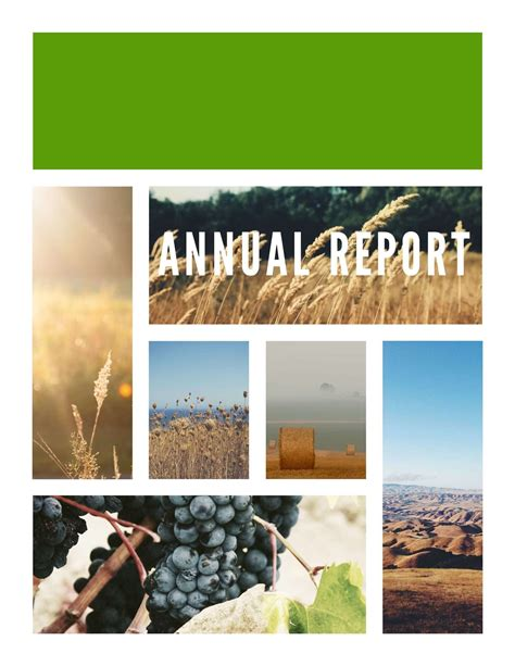 Annual Report Template Annual Report Template Word Exle Mughals