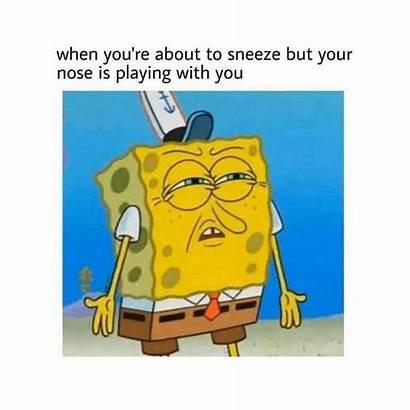 Spongebob Random Memes Funny Imgur Dump