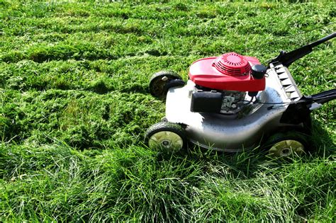 These Simple Hacks Show How To Increase The Speed Of Lawn