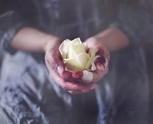 Bleeding Hand Holding Rose | www.pixshark.com - Images ...