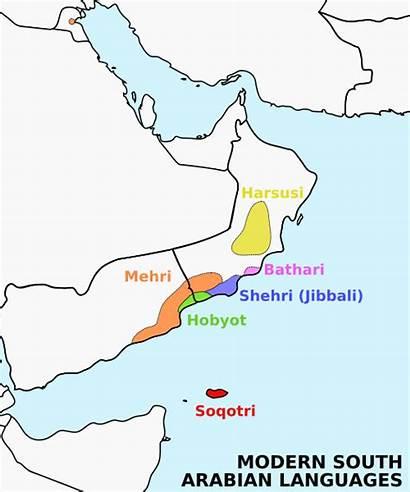 South Languages Arabian Modern Language Arabic Semitic