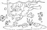 Coloring Snorkeling Dog Pages Lineart sketch template