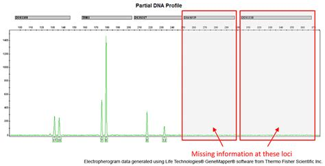 Dna Forensic Science