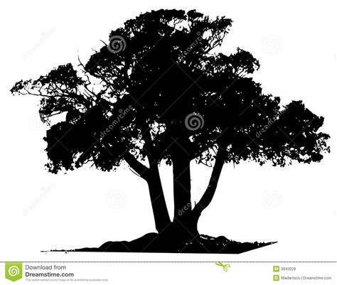Vector Tree Black Outline Royalty Free Stock Images