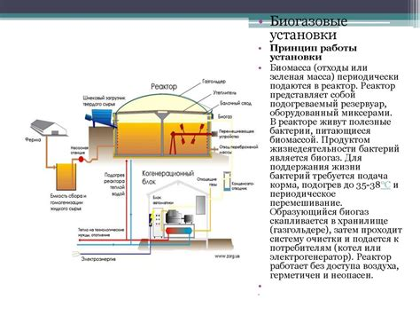 Производство биомассы для энергетических целей альтернативные источники энергии современная теория экологии