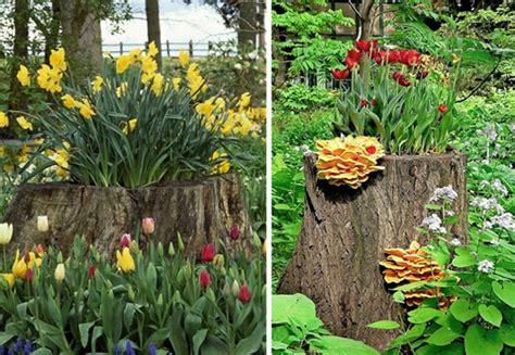 Rote Pilze Im Garten by Einen Originellen Pflanztopf Aus Baumstumpf Selber Machen