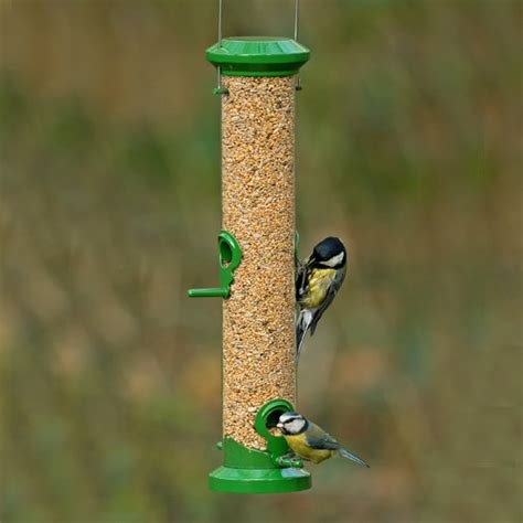 gbs exclusive premium seed feeders bird seed feeder