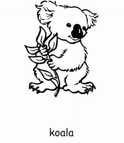 Australia Coloring Pages Endangered Species Colouring Printable