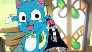 Image - Happy pats Chibi Natsu.png | Fairy Tail Wiki ...
