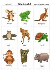 animals 1 flashcard