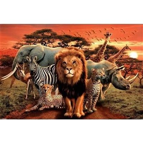 african animal collage animals pinterest african