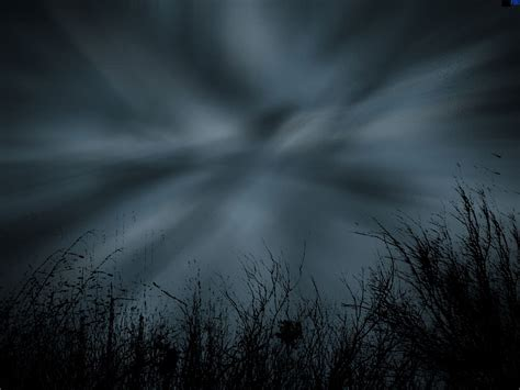bosques oscuros