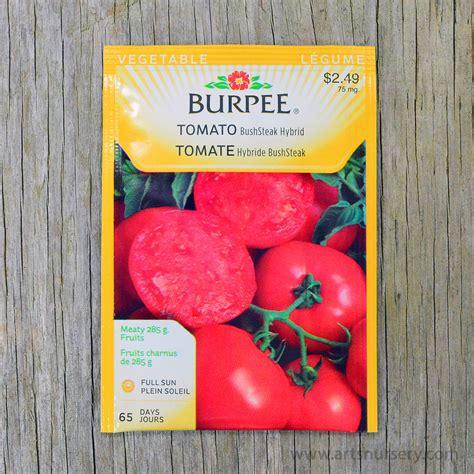 bush steak hybrid tomato seeds burpee arts nursery