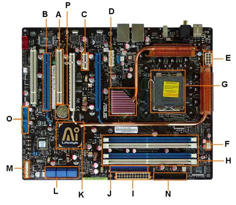 Motherboard Diagram Identify Components For
