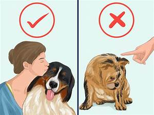 how to take care of a dog with pictures wikihow With caring for your dog